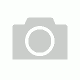 Bugsta Brushless 1/10 4WD RTR