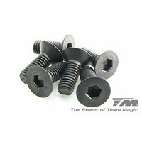 3x8mm Steel F.H. Screw (6)