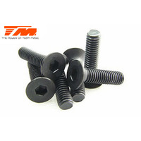 3x12mm Steel F.H. Screw (6)