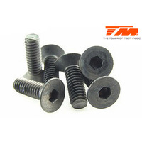 4x12mm Steel F.H. Screw (6)
