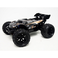 1/10th E5HX Monster brushless truck ORNG